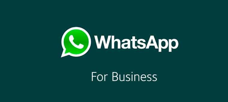 WhatsApp Business y el Customer Service: ¿amigos al fin? - S1